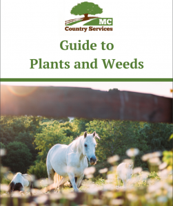 Guide to Plants and Weeds
